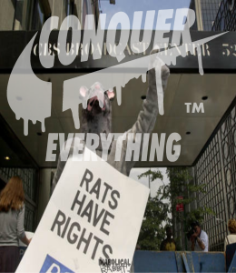 conquer everything Rats Have Rights Promo Diabolical Rabbit