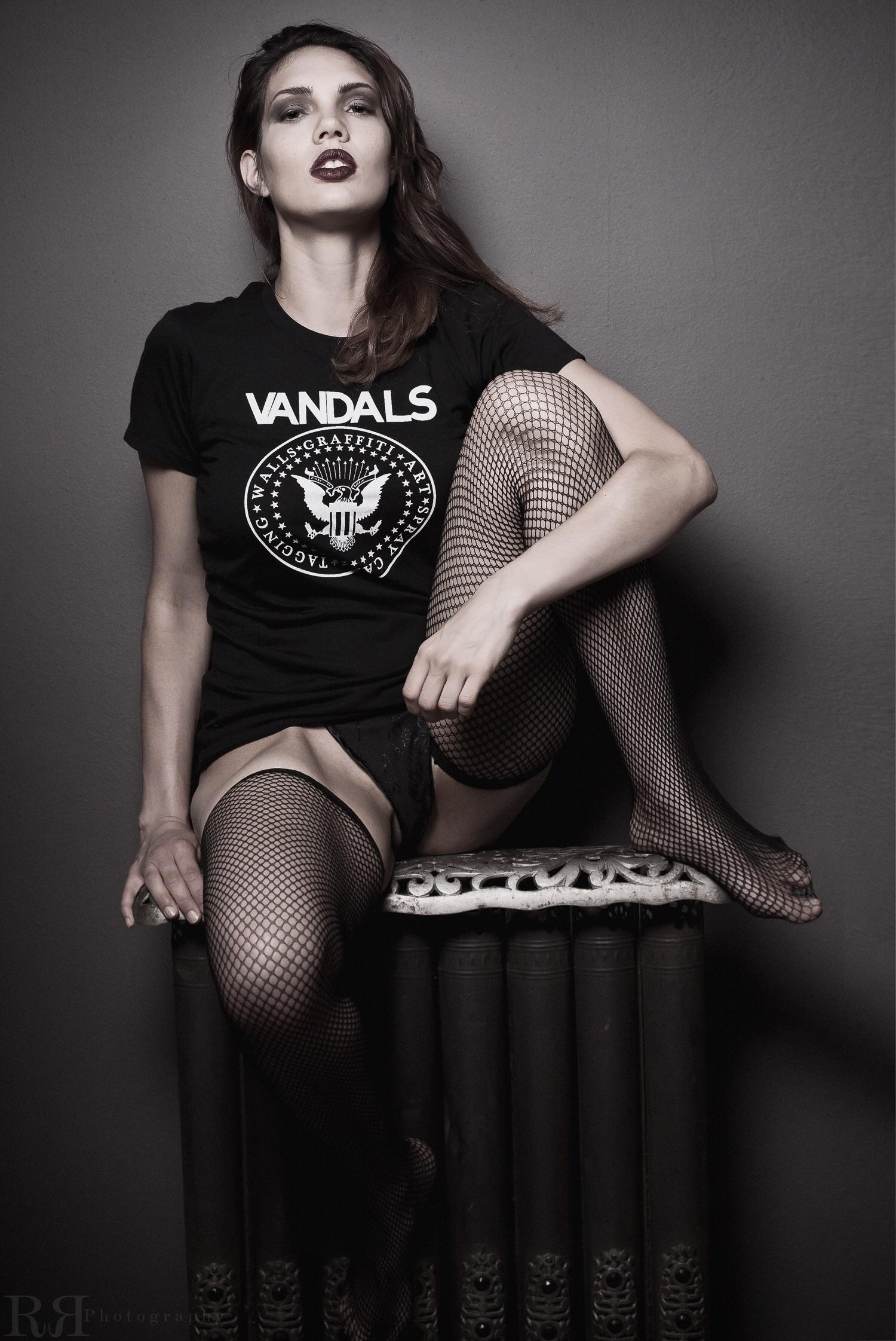 Vandals Seal