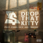 Video Of The Day: Drop That Kitty- TY Dolla $ign Ft. Charli XCX