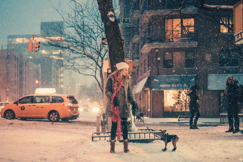 Velvet Snow NYC In The Winter Photography By Franck Bohbot Featured On Diabolical Rabbit8