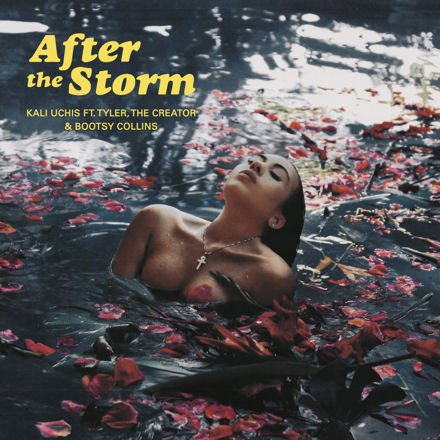After The Storm (feat. Tyler, The Creator & Bootsy Collins) Featured On Diabolical Rabbit